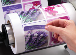 Farb-Rollendigitaldrucker CX1000e mit sehr flexible Materialauswahl